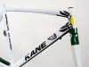 oregon ducks jack kane bicycle _ green yellow o.jpg