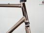 Trek 600 Series - Light and Dark Metallic Brown